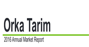Orka Tarim Market Analysis Report